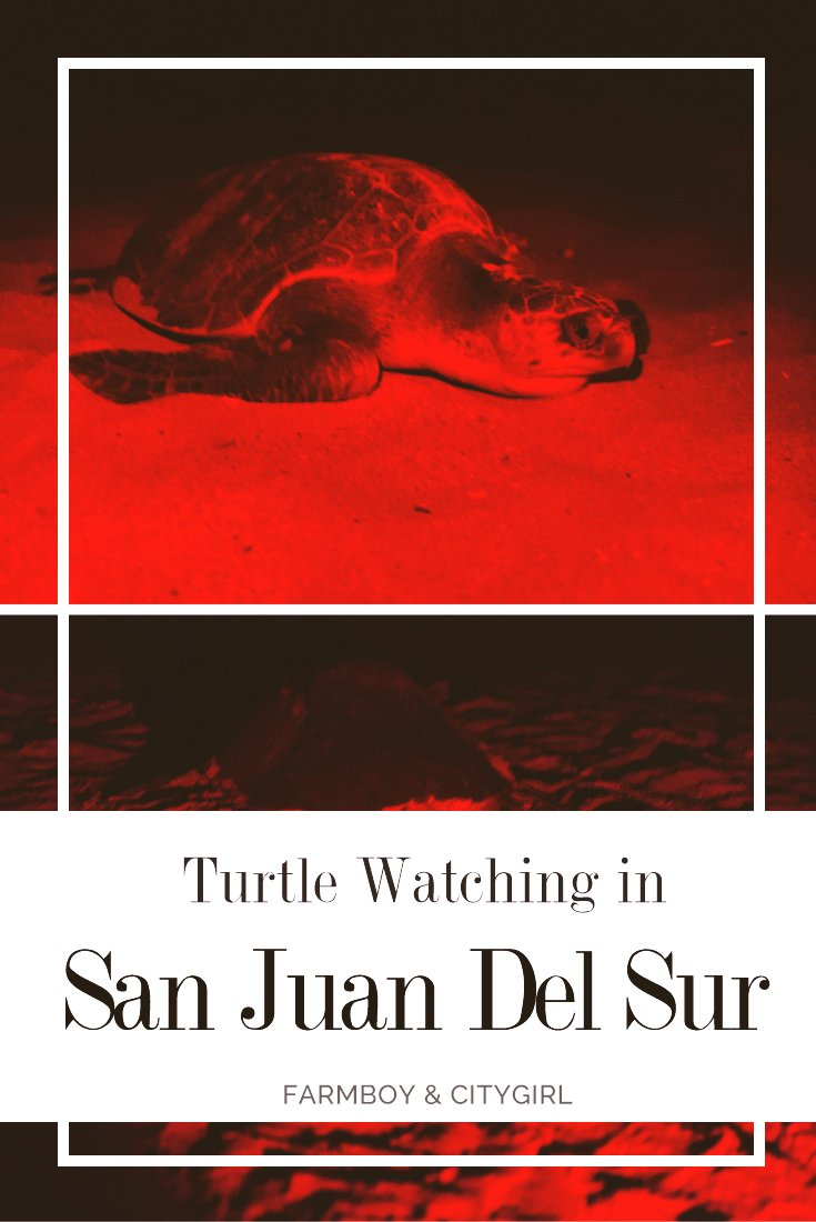 Turtle Watching in San Juan Del Sur | Farmboy & CityGirl