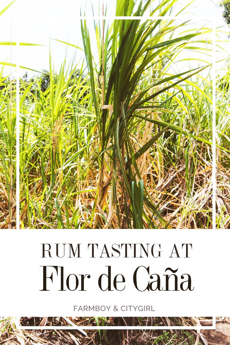 Rum Tasting in León: A Visit At the Flor De Caña Factory | FarmBoy & CityGirl